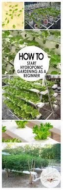 Hydroponics Herb Garden Kitchen 17 Best Ideas About Hydroponic Herb Garden On Pinterest