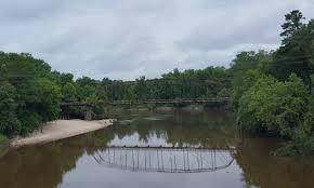 Leaf River