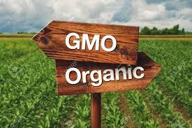 Și totuși, agricultura organică nu e soluția, spun britanicii!