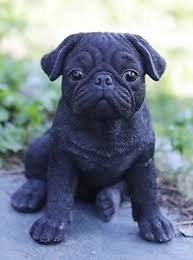 pug puppies. Beautiful Puppies Image Is Loading SittingBLACKPUGPuppyDogLifeLikeFigurine In Pug Puppies S