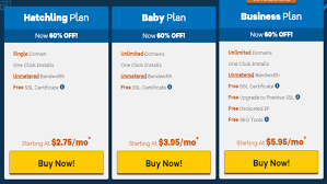 Hostgator Customer Support Supreme Web Hosts Hostgator Web Hosting Great Customer