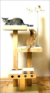 cool cat tree furniture. Cool Cat Trees For Large Cats Cheap Furniture Tree Houses Indoor Amazing Big Australia