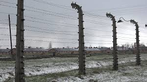 barbed wire fence concentration camp. Unique Concentration Birkenau Barracks Through Barbed Wire  Auschwitz Concentration Camp  Poland Stock Video Footage Videoblocks And Barbed Wire Fence Concentration Camp H