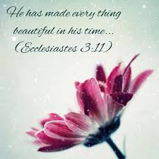 Beauty At Its Finest Quotes Best of Ecclesiastes Beauty At Its Finest Snow Flowerscripturesbible Hover Me