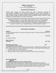 Change Manager Resume Sales Management Lewesmr