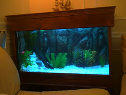 fish tank lighting ideas. Natural Soft Brown Wall Paint Color Inside The Interior Modern Warm House Design With Fish Tank Ideas Lighting
