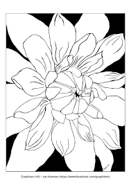 Large Printable Flower Coloring Pages Printable Flower Coloring