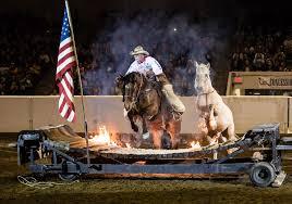 horsemanship the 24th equine