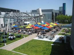 google office amenities. great outdoor area at the google offices office amenities pinterest areas and interiors