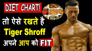 Tiger Shroff Diet Plan Chart