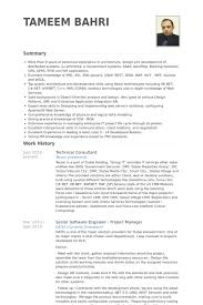 Technical Consultant Resume samples