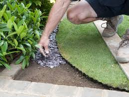 diy landscaping landscape design ideas plants lawn care how to diy landscaping landscape design ideas plants lawn care how to shape a or garden space 7 photos