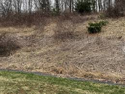 Steep hill landscaping Residential How To Clear Dead Weeds From Steep Hill Reddit How To Clear Dead Weeds From Steep Hill Landscaping