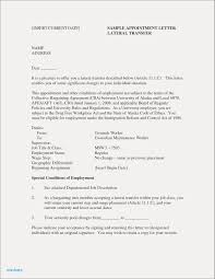 Good And Bad Resume Examples New Resume Cv Executive Sample Luxury