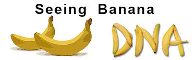 Image result for bananas dna similar humans