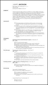 Resume Specialists Free Entry Level Technical Support Specialist Resume
