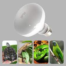 UVA + UVB ısıtma lambası ısıtıcı ampul kaplumbağa kertenkele sürüngen Pet su  geçirmez gün ışığı lambası akvaryum sıcaklık kontrol cihazı 220V Habitat  Lighting