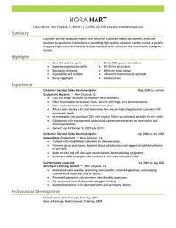 Resume For Customer Service Representative Inspiration Customer Service R Resume Summary For Customer Service