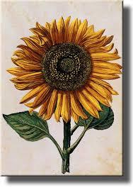 bqir luxury sunflower stunning sunflower wall decor