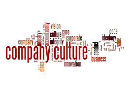 a large company vs small company essay company culture jpg
