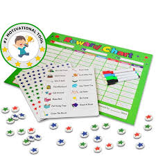 Behavior Chores Chart For Kids Toddlers Rewards Responsibility Daily Routine Calendar Dry Erase Schedule Planner Star Magnetic Board For