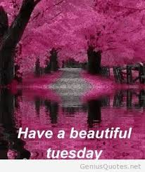 Beautiful Tuesday Quotes Best of Beautiful Tuesday Quotes