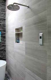 Fancy Shower shower best dual shower head amazing fancy shower heads best 5804 by guidejewelry.us
