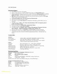22 Sap Consultant Resume Free Sample Resume