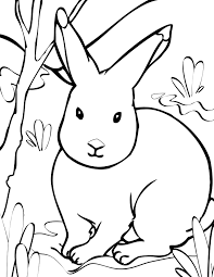 Small Picture adult winter animals coloring pages winter animals coloring pages