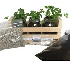 indoor herb garden kit great for growing an indoor herb garden includes everything you need to grow a herb garden cilantro basil parsley in a simple