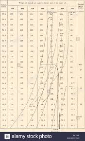 Carnegie Institution Of Washington Publication 528 Height