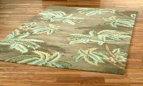 pet friendly area rugs durable kid