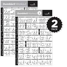 Dumbbell Workout Chart Vol 1 2 Dumbbell Exercise Poster 2 Pack Laminated Workout Strength Training Chart Build Muscle Tone Tighten Home Gym Weight Lifting Body