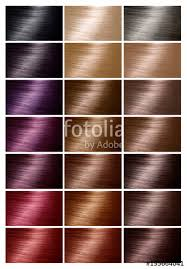 Hair Dye Colors Chart Color Chart For Hair Dye Tints Hair Color Palette With A