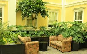 indoor garden design for affordable home decor ideas interior