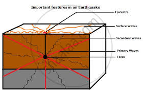 Cycle diagrams are used for all sorts of processes and series of events. Show The Epicentre Focus And The Primary Secondary And Surface Waves Of An Earthquake With The Help Of A Neat Labelled Diagram Geography And Economics Shaalaa Com