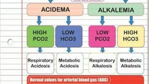 Arterial Blood Gases Nurses Tips