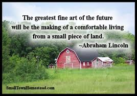 Quote Garden Mesmerizing Today's Harvest From The Quote Garden 48 The Small Town Homestead
