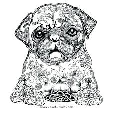 pug coloring page pug coloring pages free printable for summer pug coloring pages doug the