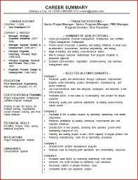 Career Summary Resume Career Summary Fabulous Professional Resume