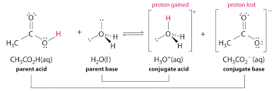 note the pattern all acid base reactions