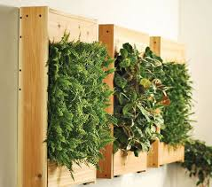 view in gallery indoor living wall kits are easy to replicate