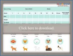 Printable Puppy Weight Charts Lovetoknow