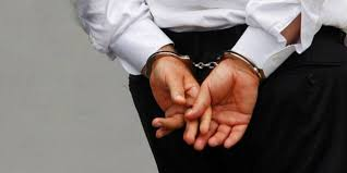 FETÖ'den sağlıkçılar gözaltında ile ilgili görsel sonucu