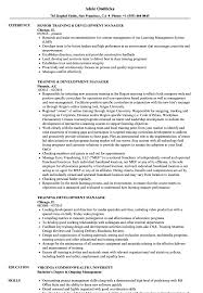 Training Development Manager Resume Samples Velvet Jobs