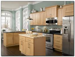 Employing Light Color Theme Image Gallery Light Colored Kitchen Cabinets