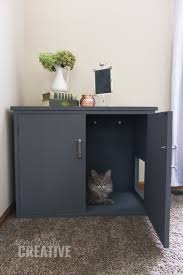 Nobody likes to look at their cat litter box. Turn an ordinary thrifted  piece of furniture into a new litter box cabinet with just a few steps and  hide that ...