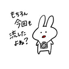 カメラ大好きうさぎスタンプ その② Line スタンプ Line Store