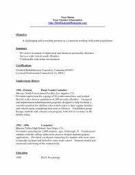 School Counselor Resume Sample School Counselor Jobscription Template Counseling Resume Cover 24