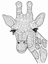 Giraffe Coloring Pages Printable Elegant 8 Best Giraffe Coloring